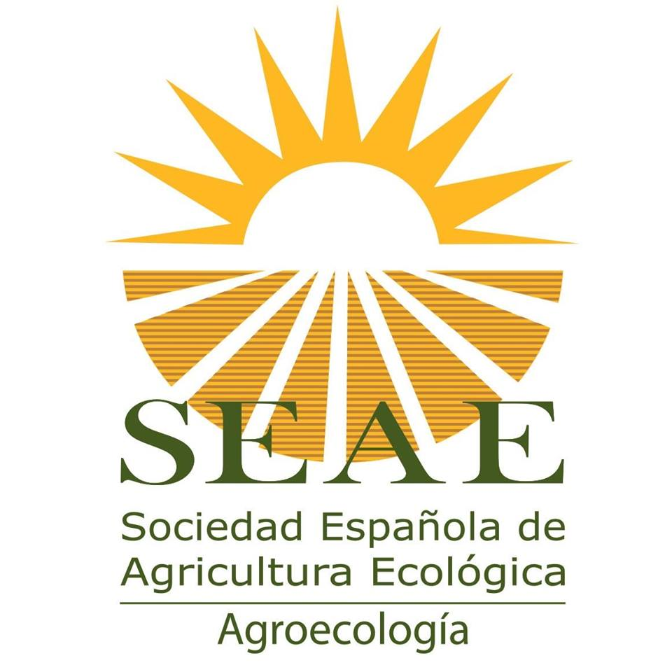 Logo SEAE